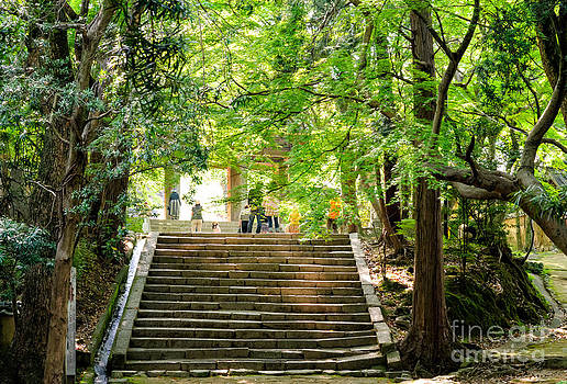 Steps to serenity - the beauty of Japanese Zen Buddhist temple grounds by David Hill