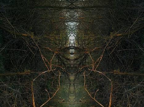 Stickight by Jon Glynn