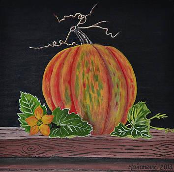 Still Life - Pumpkin by Ferid Jasarevic
