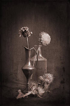 Still Life With Thistle by Jim Larimer