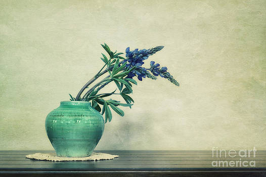Still life with Yukon Lupines by Priska Wettstein