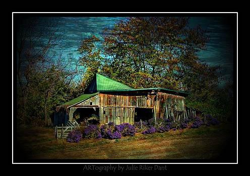 Still Picturesque by Julie Dant