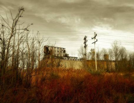Gothicrow Images - Still Standing Old Grain Elevators Of Buffalo