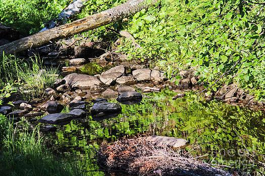 Still Waters 2 by CJ Benson