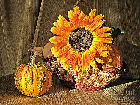Stillife with  the Sunflower and Pumpkins by Halyna  Yarova