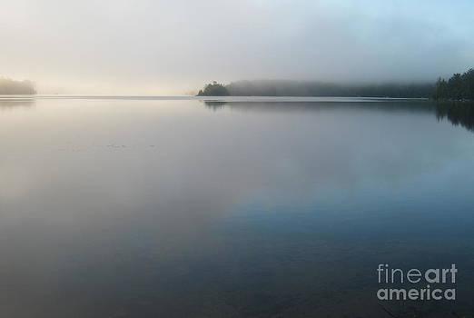 Stillness by Ara Wilnas