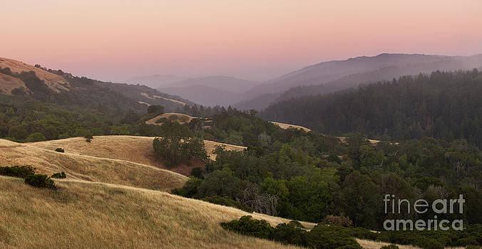 Stillness at Monte Bello by Matt Tilghman