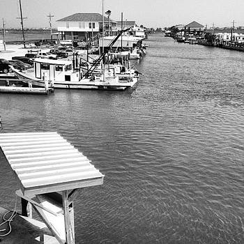 Stingaree Marina by Lynda Harrison