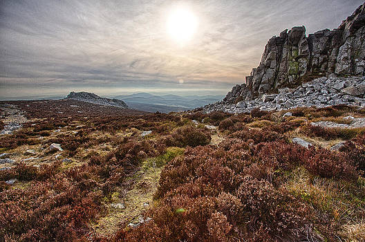 Stiperstones National Nature Reserve by Bob Kemp