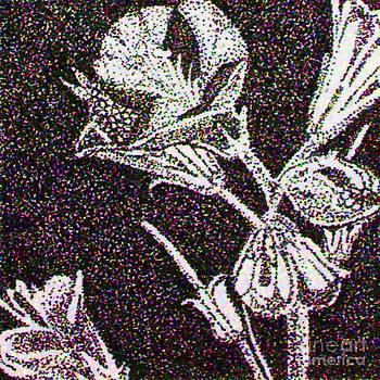 Stippled Flower by Beauty Balance Design