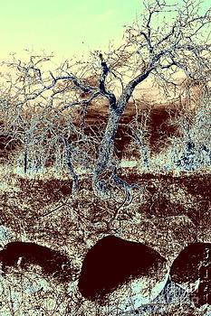 Stone Age by Mickey Harkins