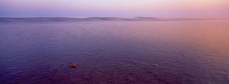 Stone Alone by Tony Wainwright
