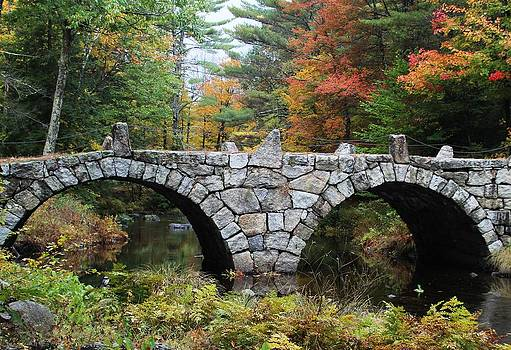 Stone Arch Bridge  by Sasha Wolfe
