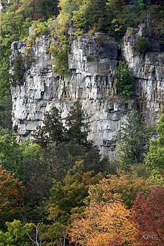 Stone Autumn by Kathy J Snow
