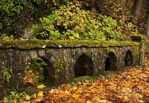 Vivian Christopher - Stone Bridge Columbia River Gorge Oregon 1