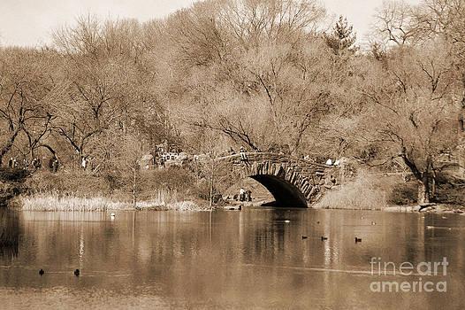 RicardMN Photography - Stone Bridge over the Lake in Central Park vintage