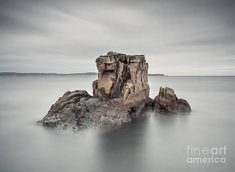 Stone Face II by Pawel Klarecki