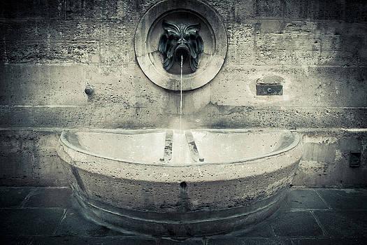 RicharD Murphy - Stone Fountain