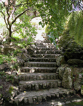 Stone steps by Aileen Mayer