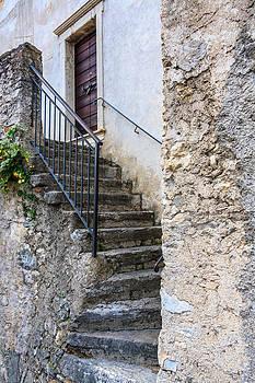 Stone Steps by Susan Leonard