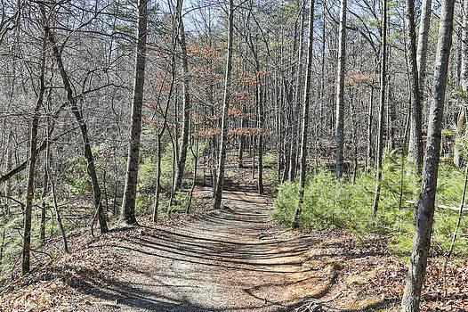 Jimmy McDonald - Stone Trail