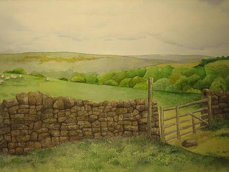 Stone Wall by Jeff Lucas