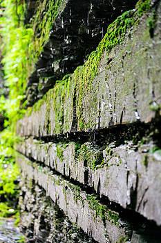 Stone Wall - Buttermilk Falls State Park by John Baumgartner