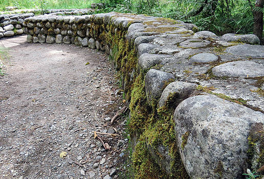 Stone Wall by Steph Maxson