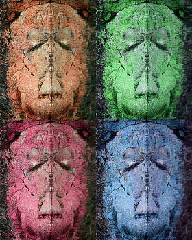 Stoneface by Paul DeRocker