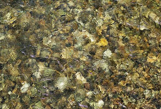 Ramunas Bruzas - Stones in A Water