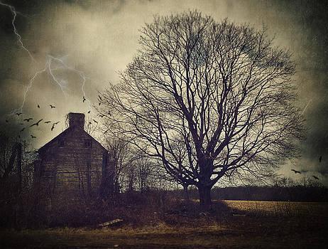 Stoopville Farm II by Kim Zier