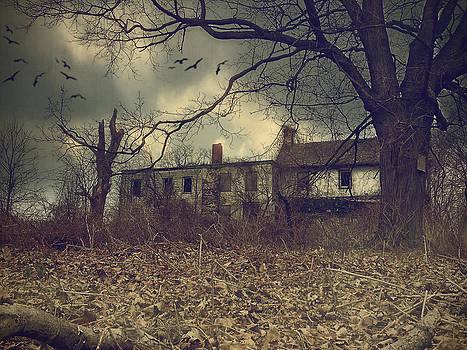 Stoopville Farm III by Kim Zier