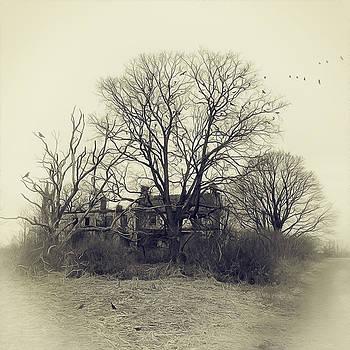 Stoopville Farm by Kim Zier
