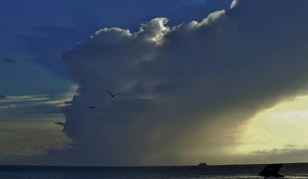 Storm Across Delaware Bay by Ed Sweeney