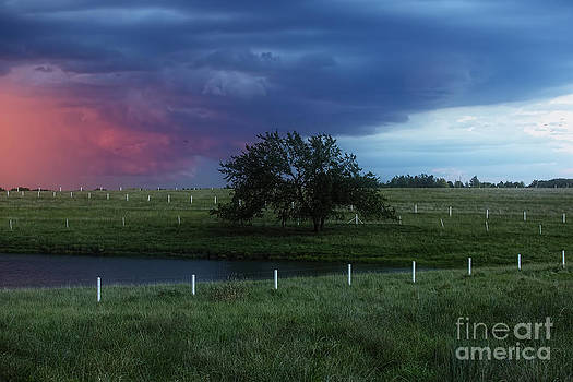 Storm clouds by Joenne Hartley