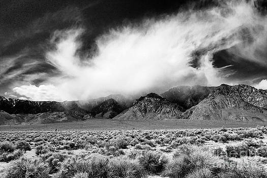 Andrew Brooks - Storm Coming