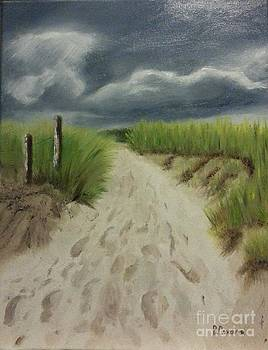 Storm Coming by Bev Conover