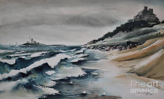 Storm Coming by Joan Hartenstein