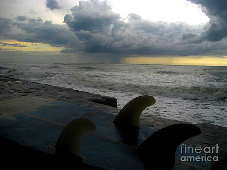 Storm Fins by Stav Stavit Zagron