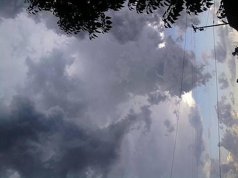 Storm by Jeni Tharp