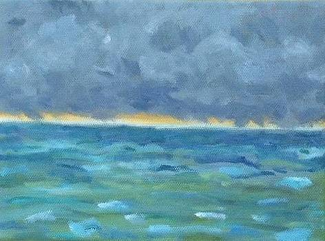 Storm Off Cinnamon Bay available by Molly Fisk