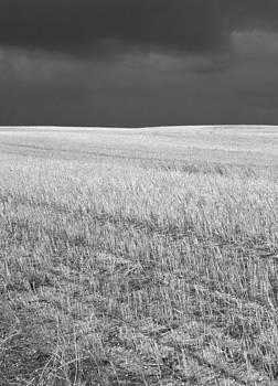 Storm on the stubble by Gordon  Grimwade