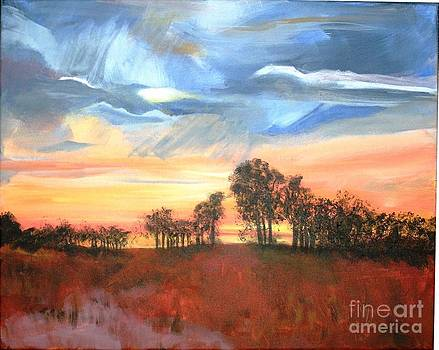 Storm Sky by Susan Boyes