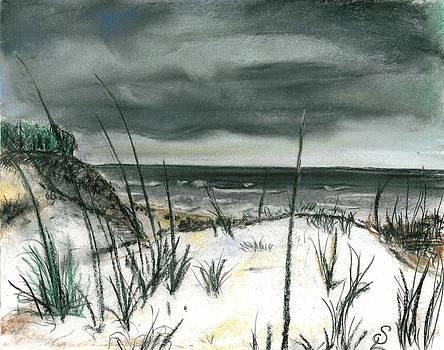 Stormy Beach by Sarah Lowe