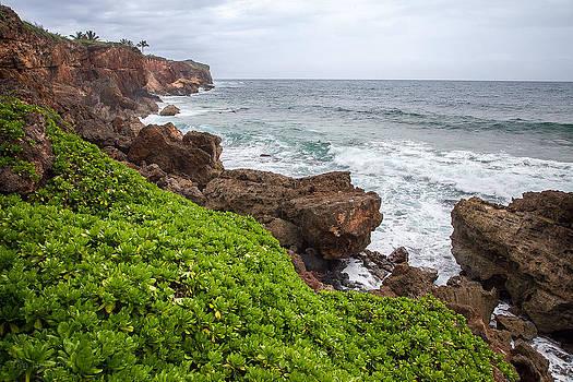 Tim Newton - Stormy Cliffs 2