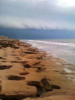 Stormy Coquina by Julie Wilcox