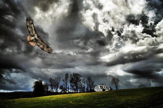 Emily Stauring - Stormy Horizon
