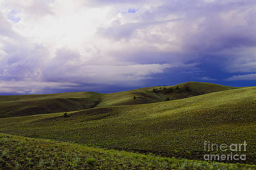 Stormy Plains by Barbara Schultheis