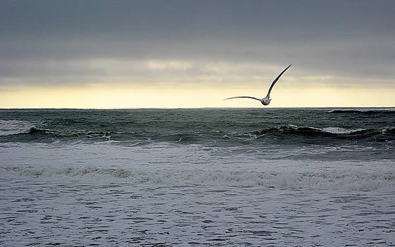 Stormy Seas by AJ  Schibig