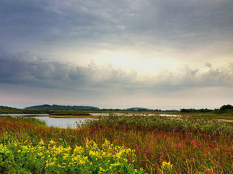 Stormy Skies by Nancy Landry